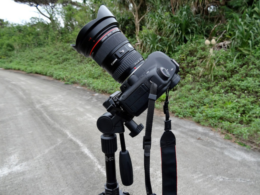 20121208-DSC00456.jpg